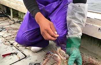 漁の合間にのイメージ